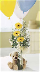 FTD Welcome Bear Bouquet from Lloyd's Florist, local florist in Louisville,KY