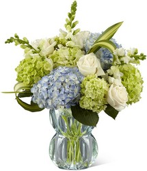 The FTD Superior Sights Luxury Bouquet from Lloyd's Florist, local florist in Louisville,KY
