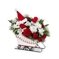 The FTD Dashing Through the Snow Bouquet from Lloyd's Florist, local florist in Louisville,KY